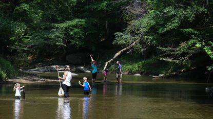 Families wade through the Middle Patuxent River last month as part of Robinson Nature Center's river romp in Columbia.