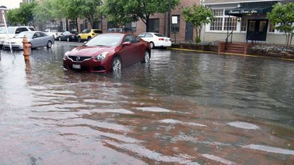 Water reaches the bumper of some cars parked in the 1900 block of Thames St. in May 2016.
