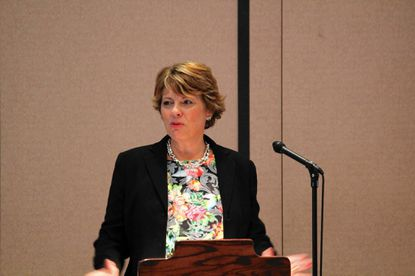 Carroll Hospital head talks LifeBridge merger - Carroll
