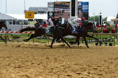 Horse 3, King for a Day wins the day's first race on the dirt track, with jockey John Velazquez during race 3 on Saturday, May 18. 2019 Preakness Stakes at Pimlico Race Course