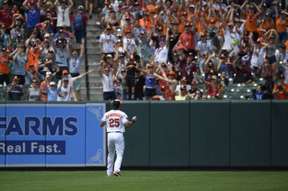 Baltimore Orioles left fielder Anthony Santander looks to the stands during a baseball game against the Toronto Blue Jays, Sunday, Aug. 4, 2019, in Baltimore.
