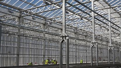 Gotham Greens is building a 100,00-square-foot hydroponic greenhouse at Tradepoint Atlantic in this November photo. Baltimore is the fourth location for the year-round grower of salad greens and herbs. The produce will be sold to local and regional restaurants and groceries.