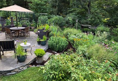 """Ashley Reinhart of the Greenbier neighborhood is the winner of the Large Garden category. For six years Reinhart has worked on her native garden, primarily in the growing season. She defined gardening as a """"labor of love."""" Reinhart's garden is designed to absorb water in her hilly community by utilizing terrace levels, a rain garden, yard swells, rain barrels, and permeable walkways."""