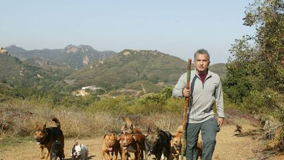 Cesar Millan and his pack
