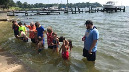 North Shore's annual 'wade-in' offers a glimpse of Magothy's improving water quality