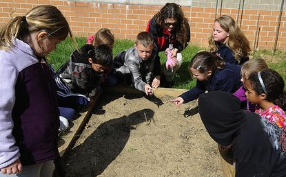 Anna Letaw, volunteer at Linton Springs Elementary School, works with second graders at the school's milkweed bed on Earth Day.