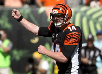 Bengals have a lot to be happy about during bye week