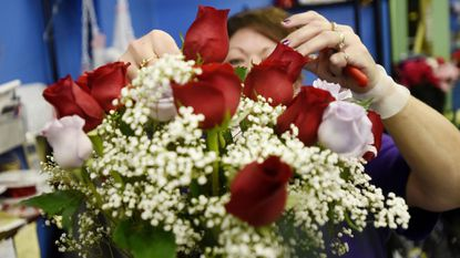 Designer Jenelle Groomes prepares an arrangement of roses while filling orders for Valentine's Day at the Cutting Garden in Westminster Feb. 13, 2017.