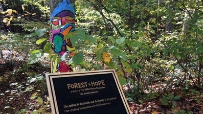 An outdoor art installation of painted trees that a nonprofit group created at Oregon Ridge Park, in Cockeysville, has angered some members of the park's advisory board, who say they weren't consulted on the project and believe the paint to be a desecration of nature.