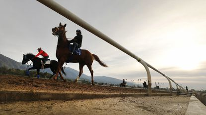 Riders and horses returned to training on the Santa Anita Park track on Monday after a string of horse deaths. Another horse died Thursday.