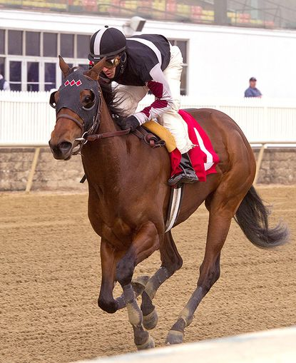 Walkwithapurpose, ridden by Jeremy Rose, wins the $100,000 Maryland Juvenile Filly Championship for 2-year-olds at Laurel Park.