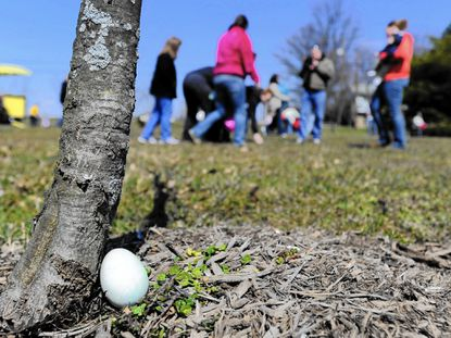 An egg remains hidden as egg hunters search a field in Taneytown Memorial Park during an Easter egg hunt March 30, 2013.