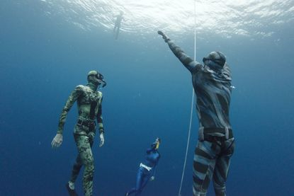 Free-diving takes you to the depths of despair and the peaks of excitement