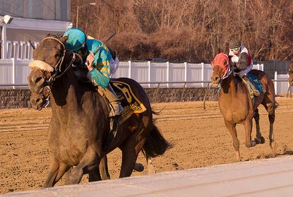 Private Tale, ridden by Sheldon Russell, wins the $125,000 Native Dancer Stakes for older horses at Laurel Park.
