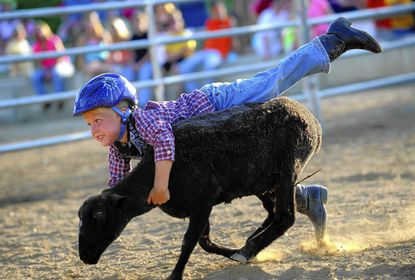 A plethora of activities, events, and sights to be seen at the Fair