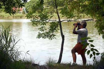 Peggy Palmer of Edgewater looks out around Deep Creek with binoculars. The West/Rhode Riverkeeper Inc., working in partnership with the Maryland Park Service, opened an interactive hiking trail in July 2016 at Franklin Point State Park in Shady Side.