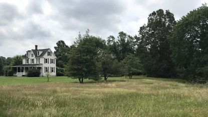 The city of Aberdeen wants to spend $1.2 million to purchase the 13-acre Mitchell Estate on West Bel Air Avenue to serve as an urban park and the future site of an activity center.