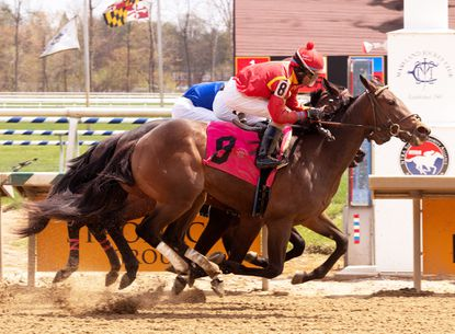 Digest: Gallanor wins Maryland's first juvenile race of season at Laurel Park