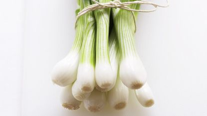 Carrie's Kitchen: Getting the most out of spring/green/young onions