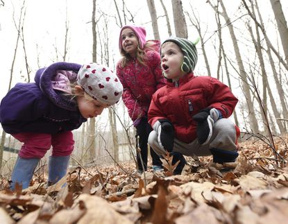 """Sisters Miriam, 3, and Esther Giordano, 5, and Andrew Carpenter, 3, react after locating animal droppings outside Piney Run Nature Center in Eldersburg during Friday's """"Mother Nature and Me"""" program where children learned about looking for telltale signs and traces of animal activity in the park Feb. 9, 2018."""