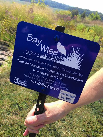 St. James Episcopal Church's new rain garden was given a University of Maryland Extension Bay-Wise certification.