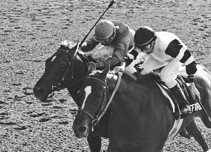 Affirmed, right, ridden by Steve Cauthen, battles Alydar, ridden by Jorge Valasquez, down the stretch to win the Belmont Stakes horse race, and the Triple Crown, onJune 10, 1978 at Belmont Park in Elmont, N.Y.