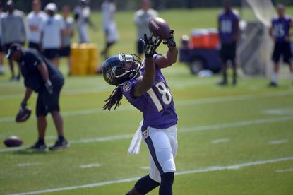 Preston: Despite appearances, Ravens have improved over last year
