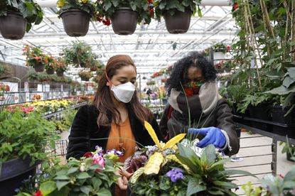 Tye Clark, left, and her mother Miriam Clark check the information on a plant as they browse the aisles at a nursery Cockeysville.