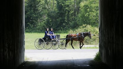 North Carroll: Take a trip along Indiana Amish Trail with Pleasant Grove UMW