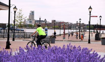 A guide from the Waterfront Partnership rides his bike along Thames Street in Fells Point.