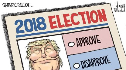 This year's midterm elections are all about whether you approve of President Trump, says David Horsey.