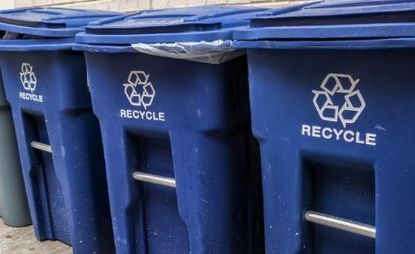 Blue recycling bins are lined up in San Diego, Calif. They accept plastic bags but whether they are really recycled (or headed to a trash-to-energy facility) is another question.