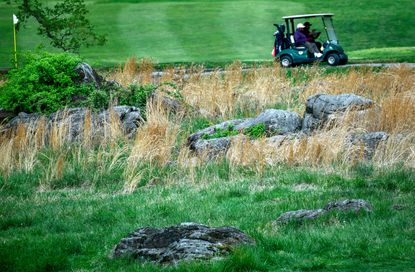 Golfers drive past ultramafic rock near the ninth hole at Forest Park Golf Course in Baltimore.