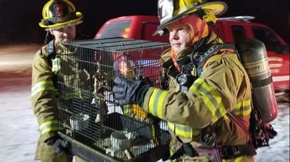 Firefighters carry a bird cage removed from a trailer that caught fire Wednesday night in the 4000 block of Prospect Road in Whiteford. Firefighters removed 10 birds and a cat from the home.