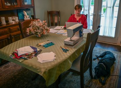 Kristi Lowman, a Baltimore County school nurse, works on her laptop on her dining room table as her dog Rosie keeps her company. Lowman has been helping the county health department by calling residents who tested positive, explaining how to isolate themselves, and assisting with the county's contact tracing efforts. She has also been sewing masks in her spare time.