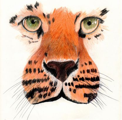 "Jaylon Virgil's drawing, ""Tiger,"" is included in a student art exhibit at Montpelier Mansion."