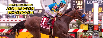 Pimlico hosts party to watch American Pharoah go for the Triple Crown