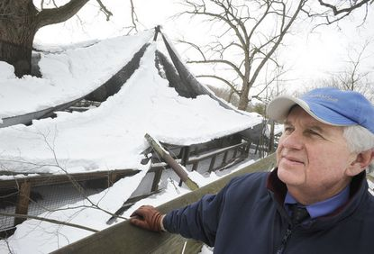 """""""This is a big, big setback,"""" said zoo president Donald Hutchinson, pictured next to the African aviary. """"We're hoping that everyone who loves the zoo will help us bounce back."""""""