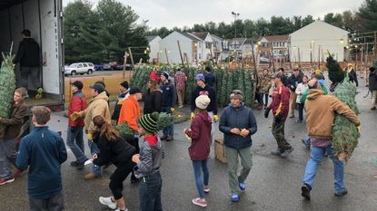 Volunteers help unload more than 400 Fraser firs from North Carolina Sunday to sell at the Bel Air Lions Club Christmas tree sale.