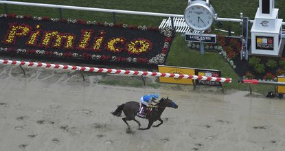 American Pharoah, ridden by Victor Espinoza, wins the 140th Preakness Stakes horse race at Pimlico Race Course, Saturday, May 16, 2015, in Baltimore. (AP Photo/Nick Wass)