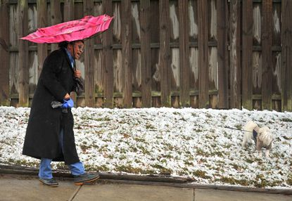 Meteorologists take a lashing, apologize for busted snow forecast