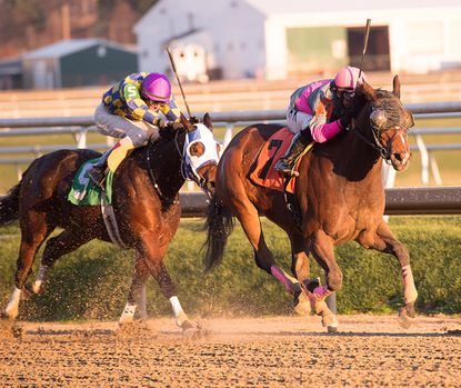 Lady Sabelia wins the $100,000 Willa On the Move on Saturday. Dec. 5, 2015, at Laurel Park by beating Disco Chick by 1 3/4 lengths.
