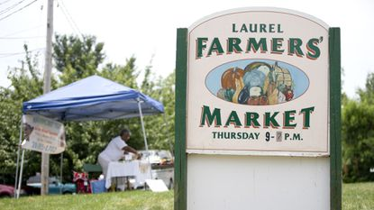 The Laurel Board of Trade will not host a farmers market this year.
