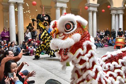The Johns Hopkins University Yong Han Lion Dance Troupe entertained visitors who came to the Walters Art Museum for the 11th annual Lunar New Year celebration of the Year of the Rat in January. The lions pretend to eat a head of lettuce which symbolizes a bountiful harvest and then they fling pieces of lettuce, to bring luck to those who are hit.