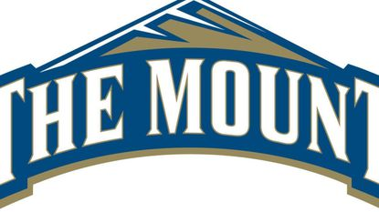 Men's Basketball: Balance can't help Mount St. Mary's past LIU Brooklyn on the road