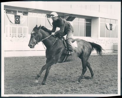 Dancer's Image is pictured in 1968.