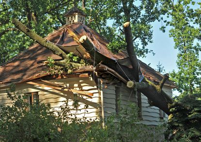 Damage to house on Tilbury Way in Homeland. Sections of the tree were removed by Ameritree Experts using a 100-lb. crane over the weekend. The neighborhood of Homeland in north Baltimore was one of the areas hit hard by Friday night's storms.