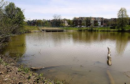 Officials from the city and Prince George's County Department of Environmental Resources will discuss plans to dredge Laurel Lakes at a community meeting Nov. 14.