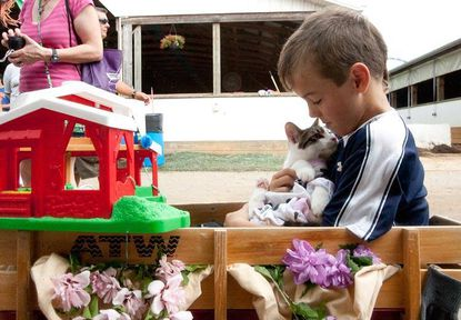 """Logan O'Connell, 8, of Dayton cradles his cat, Sparky, before the start of the pretty animal contest at the Howard County Fair on Aug. 8. O'Connell dressed Sparky as a cow and took home the """"most creative"""" award for his costume."""