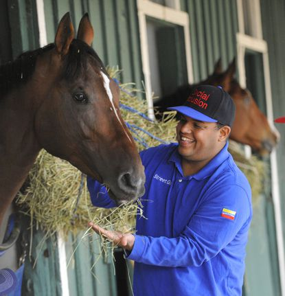 Ronald Sanchez the owner of Social Inclusion, feeds his horse at Pimlico.